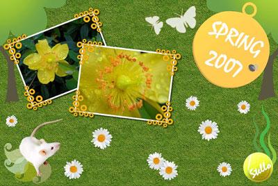 spring2007.jpg