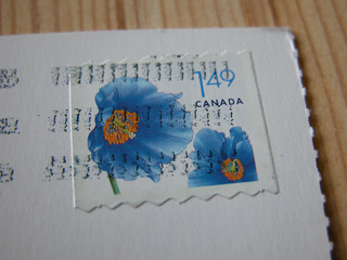 060227_ca-2285stamps.jpg